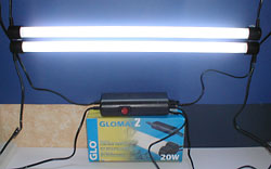 UV Lighting for Reptiles: Fluorescent Tubes and Reflectors